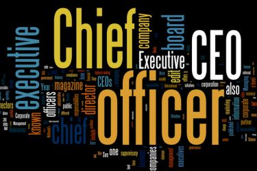 Top Performing CEO's